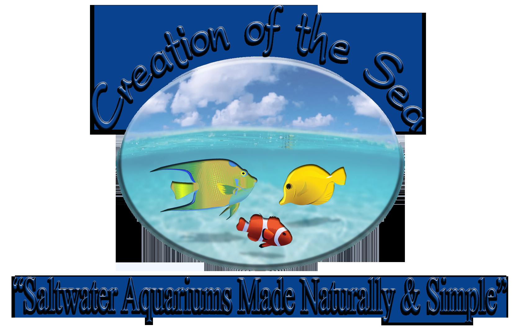 6-24-13COTS_Logo