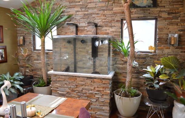 Custom Saltwater Aquarium with Stone Stand