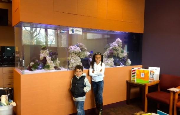 Custom See-through Saltwater Reef Aquarium in Office