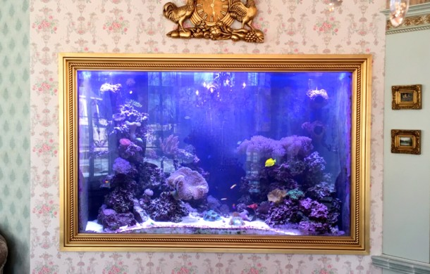 Custom Built-in (Picture Frame) Saltwater Aquarium