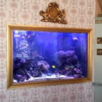 Custom Saltwater Aquariums