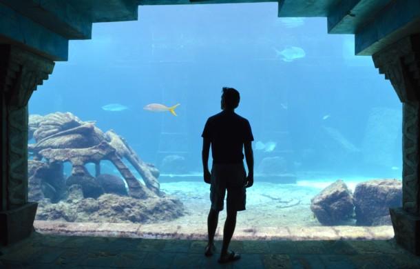 Oceanariums