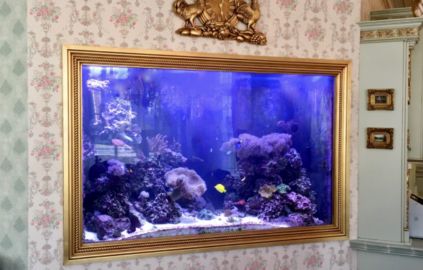 "6-foot High Custom ""Built-in"" Saltwater Aquarium"